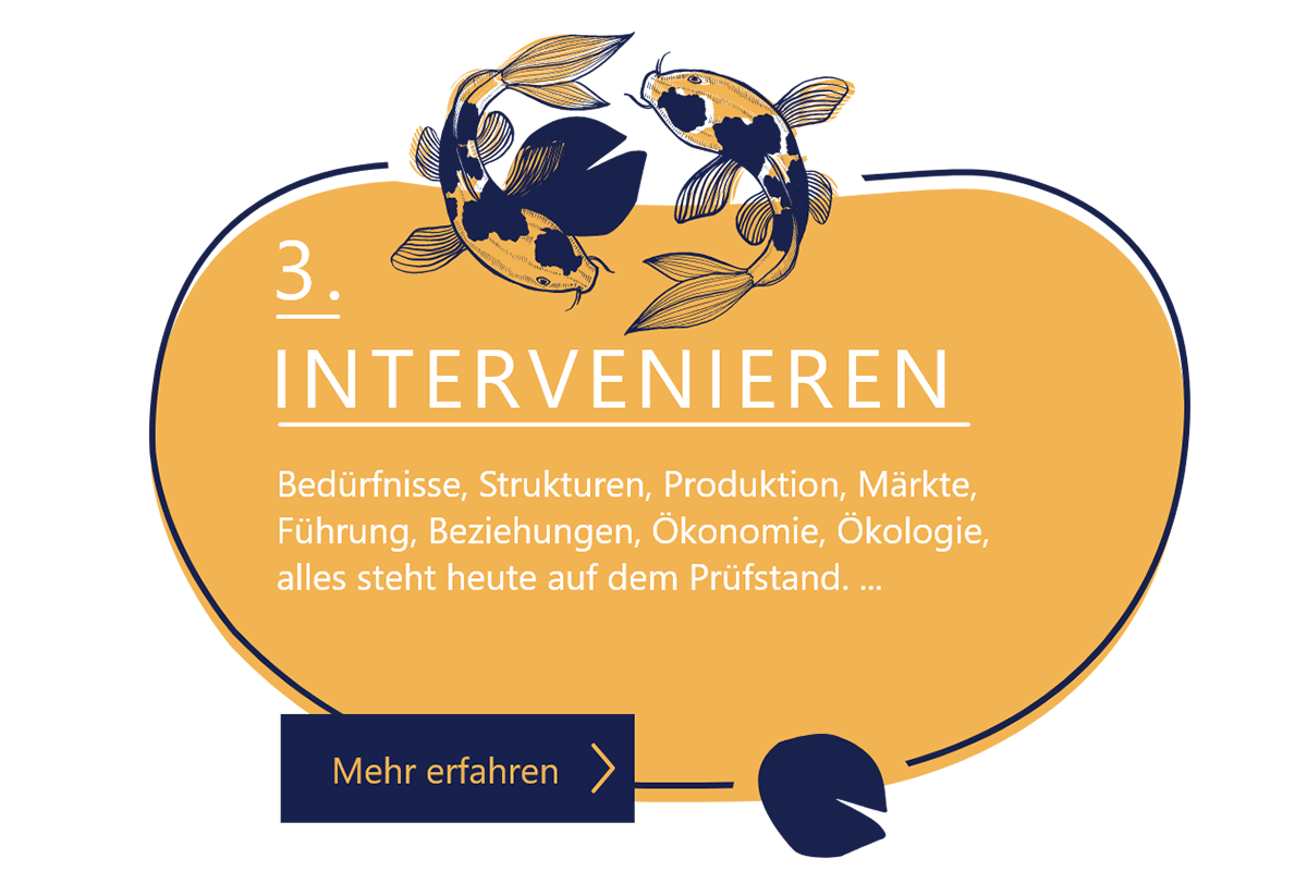 popup-intervenieren-home